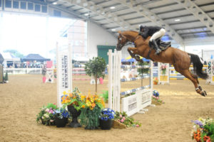 British Showjumping (Cat 2) @ Aintree International Equestrian Centre | England | United Kingdom