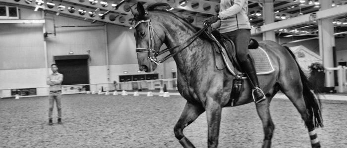 Events Aintree International Equestrian Centre