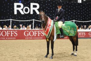 RoR Goffs UK National Championships 2020 @ Aintree International Equestrian Centre | England | United Kingdom