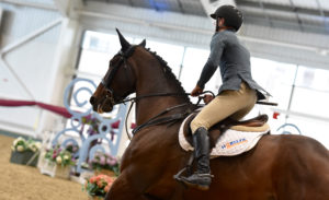 British Showjumping Cat 2 ENTRIES SUSPENDED @ Aintree International Equestrian Centre | England | United Kingdom