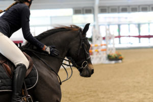 British Showjumping Cat 2 - CANCELLED @ Aintree International Equestrian Centre | England | United Kingdom